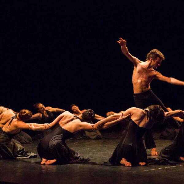 Spectacle Connection Signes cours de Danse Modern Jazz