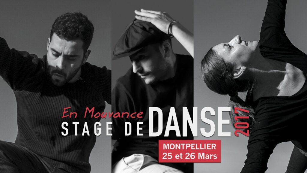 Affiche Stage de danse 2017