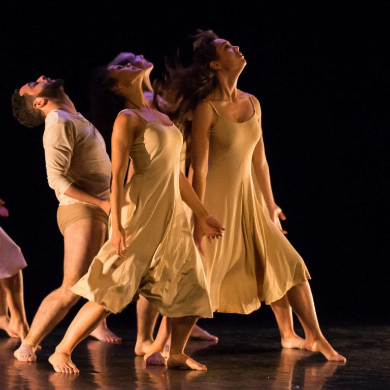 Cours de Danse Contemporaine