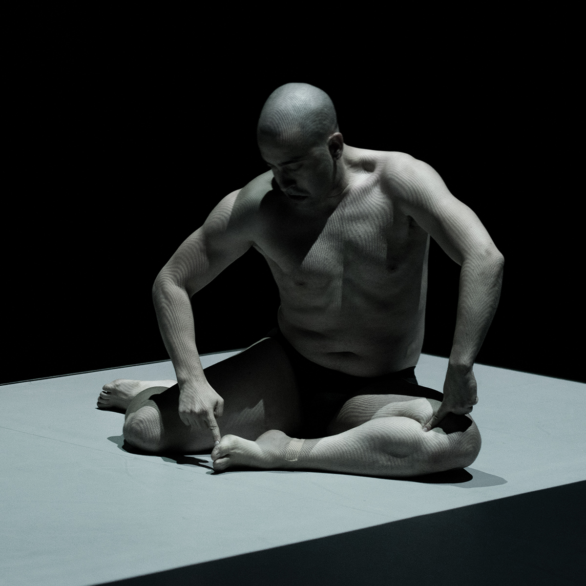 Parasitic-premiere Dresden