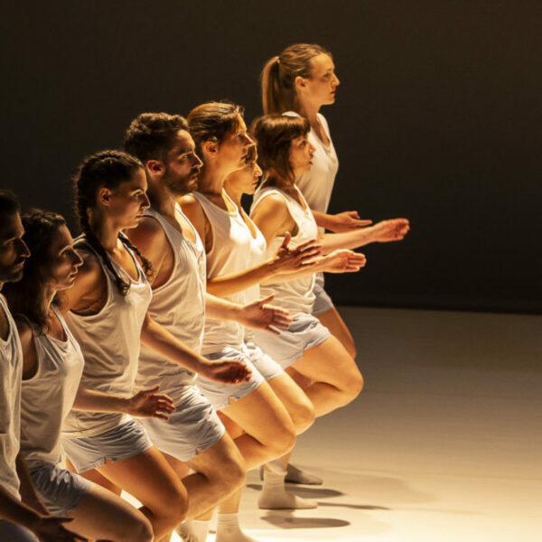 Cours de danse cursus Creation & Repertoire
